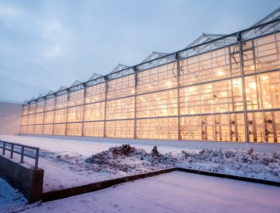 В Ноовсибирской области введена первая очередь иепличного комплекса