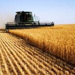 В Пензенской области будут увеличивать урожайность за счет исправления ошибок
