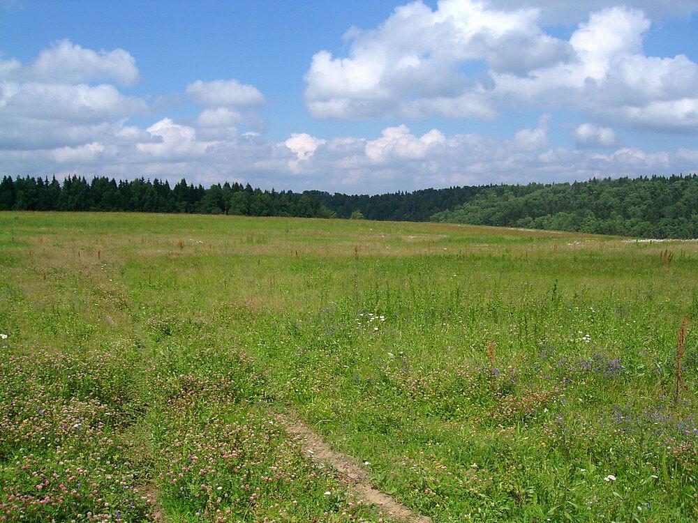 В Крыму завершена инвентаризация земель