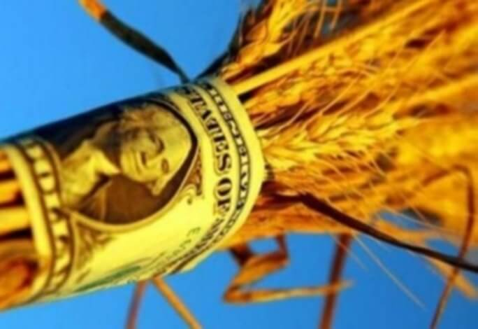 цена экспортной пшеницы вырастет в январе 2017 года