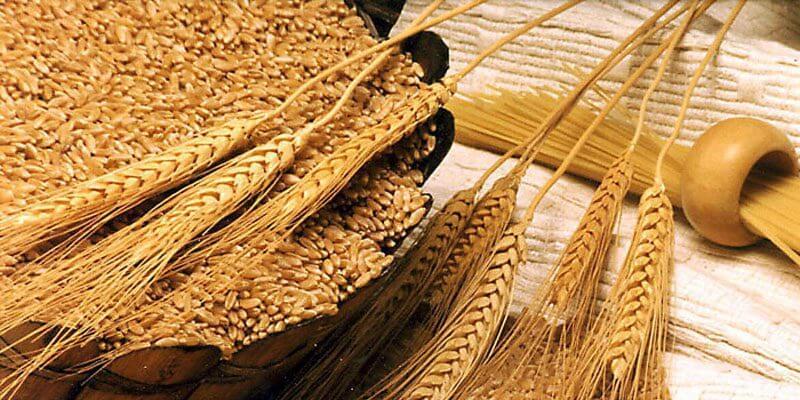 Челябинские аграрии вышли на международный рынок