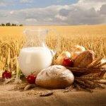 Тамбовская область проводит торжественные мероприятия в честь дня работника сельского хозяйства