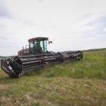 Академик РАН Кашеваров рекомендует сельхозпроизводителям Томской области