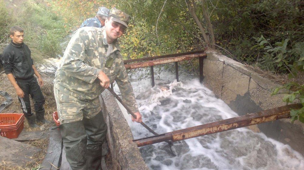 Рыбовдческая отрасль в Мурманской отрасли под вопросом