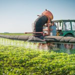 В Белгородской области развивают биотехнологии в агропромышленном комплексе