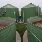 В Воронежской области нашли решение реализации навоза