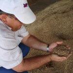 Проблемы растениеводства нужно решать в межсезонье