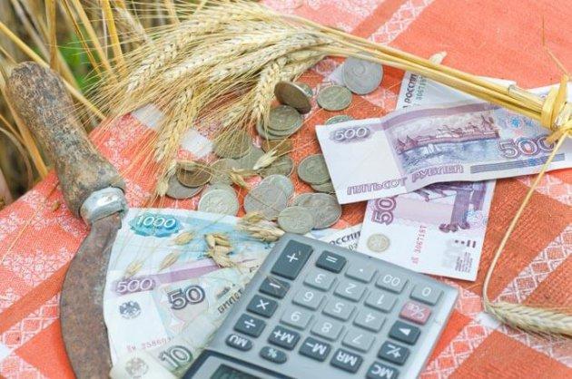 В Ленинградской области увеличат финансирование АПК