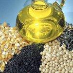 Россия увеличивает объемы экспорта растительных масел