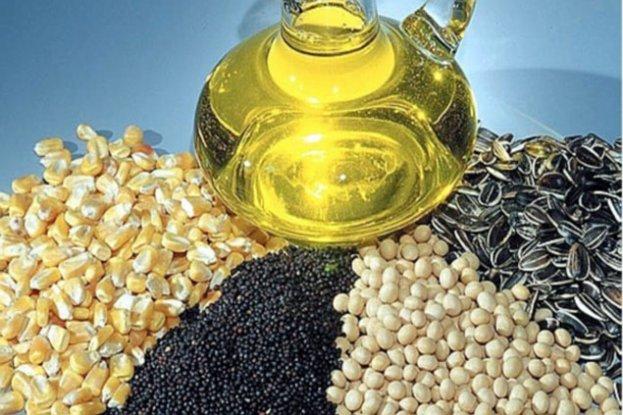 РОссийские растительные масла востребованны за границей