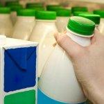 С Нового года молочная продукция может подняться в цене