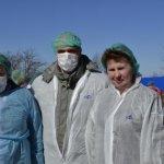 В Новосибирской области усиливают меры профилактики по заболеванию животных