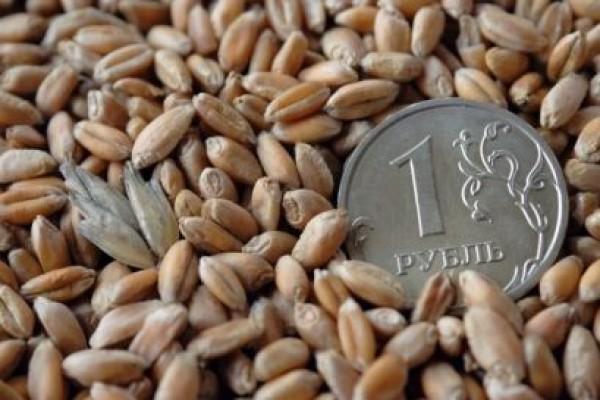 В Корасноярском крае приняли нововведения в закон о субсидиях