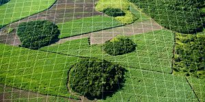 Точное земледелие