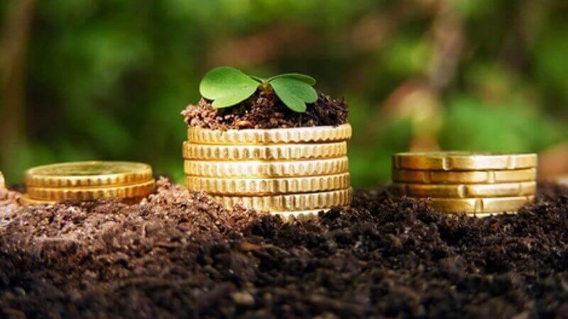 Частные инвестиции в сельское хозяйство
