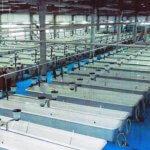 В Самарской области введен в строй рыбоводный государственный завод