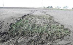 Водная и ветровая эрозия почвы