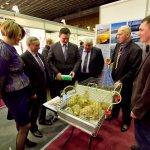 В Волгоградской области районы наращивают инвестиционный потенциал