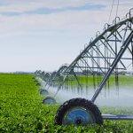 Первый агропромышленный кластер создается в Ярославской области