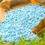 Ростовские аграрии следят за сохранностью плодородия почвы