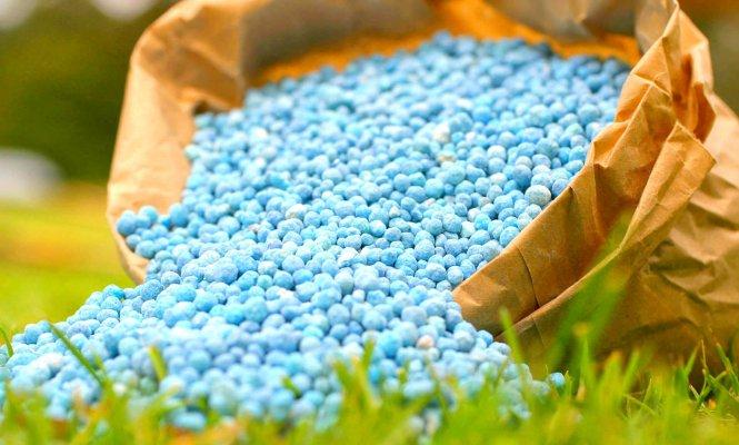 Ростовкая область обеспечна минеральными удобрениями
