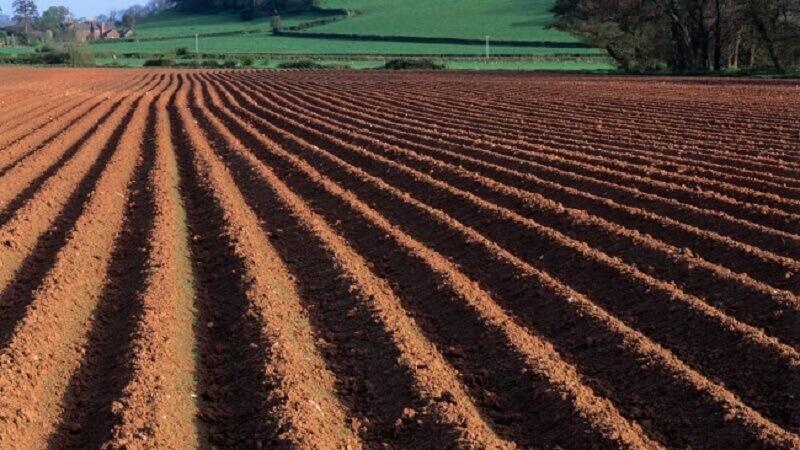Сохранение плодородного слоя почвы