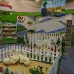 Второй всероссийский форум продовольственной безопасности, проходивший в Ростове, завершил свою работу