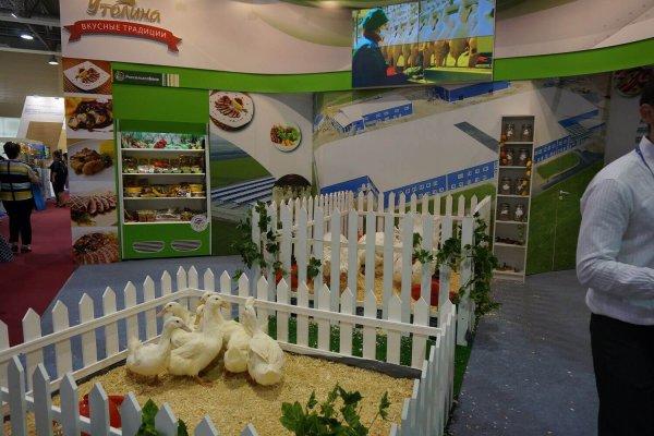 В Ростсове закончился форум продовольственной безопасности