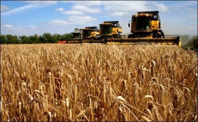 Иркутская область через 3 года обзещаетвырастить миллион тонн зерна