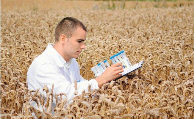 По 1 млн.руб. получат молодые специалисты Ульяновской агроуниверситета