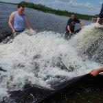 Межрегиональное совещание по рыболовству прошло в Севастополе