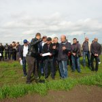 В Татарстане активно готовятся к проведению выставки «Всероссийский день поля – 2017»