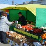 Жители Магаданской области будут обеспечены свежей рыбой и овощами