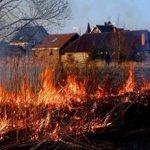 Правительство Алтайского края приняло решение  серьезно наказывать нарушителей противопожарной безопасности