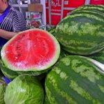 Россельхознадзор Оренбургской области не пустил на территорию России овощи и фрукты из Казахстана