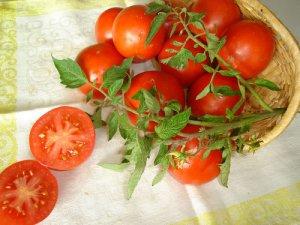 Использование таблеток глиокладин для выращивания помидоров