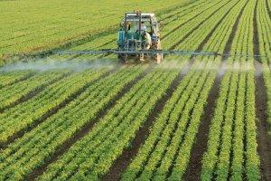 Химическая защита растений
