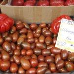 Ткачев заверяет, что к осени цены на овощную продукцию значительно снизятся
