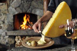 В Сибири планируется организовать производство сыра