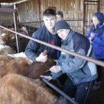 В Рязанской области практику студенты аграрного вуза проходят в действующих сельхозпредприятиях