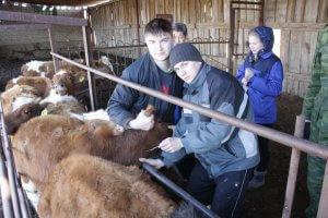 Студенты Рязанского агротенхнического университета на летней практике