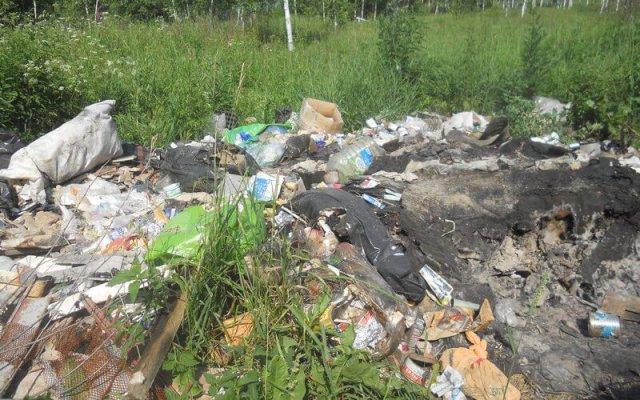 экологи Брянской области стоят на страже сохранения природы
