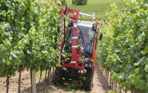 Технологическая замена ручного ухода за саженцами винограда