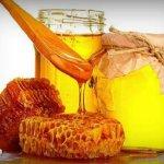 Пятый пчеловодческий региональный слет откроется в первой половине августа в Тверской области