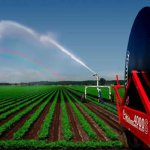 Высокая урожайность обеспечивается современными технологиями