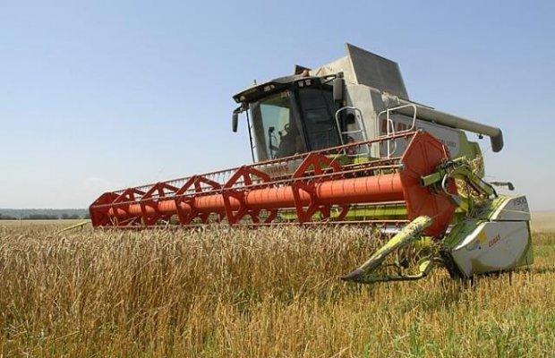 В самарской области ставят рекорды по урожайности озимых культур