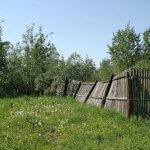 Жителей Искитимского района Новосибирской области обяжут уплачивать налог за неиспользование земли сельскохозяйственного назначения