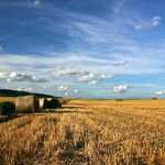 Агропромышленный холдинг «Зерно Жизни» в Самарской области вводит в оборот новые территории сельскохозяйственного значения