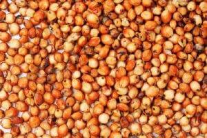 Зерно сорго