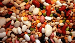Зернобобовые: виды и особенности выращивания